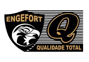 Grupo Engefort